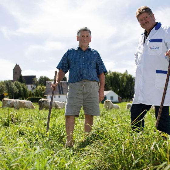 Die WITTELSBACHER OCHSEN für den Gasthof Goldener Stern grasen auf den Weiden der Vertragsbauern vom Metzger Ottillinger aus Pöttmes. Diese Woche kommt das Fleisch vom Landwirt.